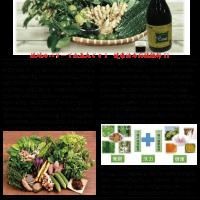 琉球の恵み!琉球野菜発酵エキス